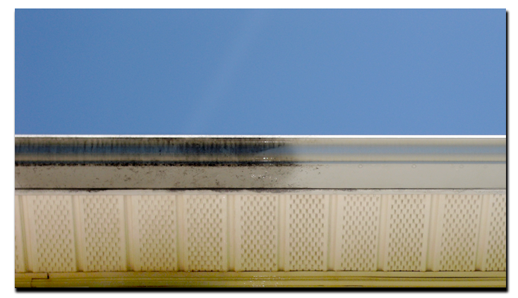 Gutter Brightening ⋆ Window Cleaning Power Washing